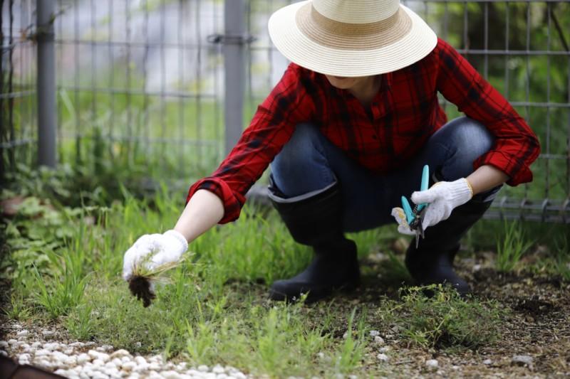 ガーデニングや雑草抜きが楽になる腰痛対策グッズ